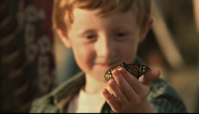 circo-farfalla