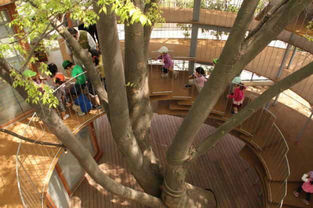 albero-scuola