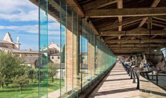 museo-storia-naturale-di-pisa