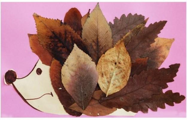 riccio-di-foglie